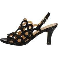 Chaussures Femme Sandales et Nu-pieds Bottega Lotti 1291 NOIR