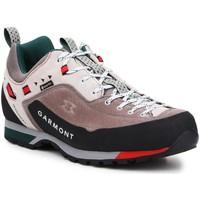 Chaussures Homme Randonnée Garmont Dragontail LT GTX 000238 Wielokolorowy