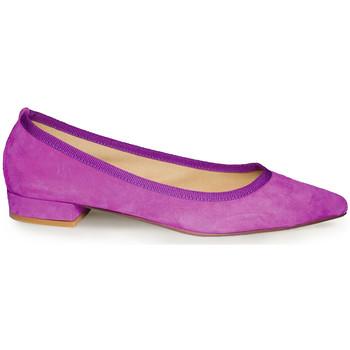 Chaussures Femme Ballerines / babies Ballerette C MARZIO035-003-050 Violet
