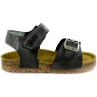 Chaussures Garçon Sandales et Nu-pieds Stones and Bones Lindo Iron Autres