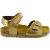 Chaussures Fille Sandales et Nu-pieds Stones and Bones Cafar Bronze Autres