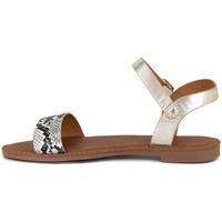 Chaussures Femme Sandales et Nu-pieds J.bradford JB-LAUSANNE CHAMPAGNE Gris