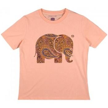 Vêtements Femme Chemises / Chemisiers Trendsplant T-SHIRT FEMME  029970WPTP Orange