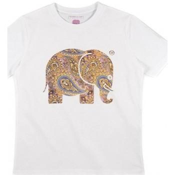 Vêtements Femme Chemises / Chemisiers Trendsplant T-SHIRT FEMME  029940WPTW Blanc