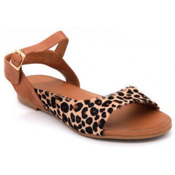 Chaussures Femme Sandales et Nu-pieds Coco & Abricot saintmichael Marron