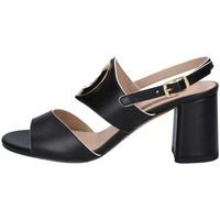 Chaussures Femme Sandales et Nu-pieds Albano 4179 NOIR