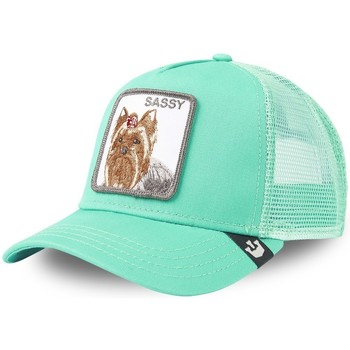 Accessoires textile Homme Casquettes Goorin Bros Casquette Trucker Snapback Sassy Lady Turquoise