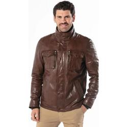 Vêtements Homme Blousons Daytona ANDERSON IC SHEEP TIGER BISON Bison