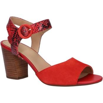 Chaussures Femme Sandales et Nu-pieds Geox D828ZC 02141 D EUDORA Rojo