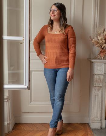 Vêtements Femme Pulls Céleste NYSSA Rouille