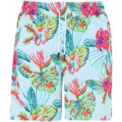 Vêtements Homme Shorts / Bermudas Horspist Short Multicolore