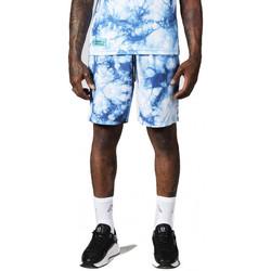 Vêtements Homme Shorts / Bermudas Horspist Short $SKU Anthracite