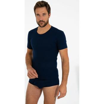 Vêtements Homme T-shirts manches courtes Armor Lux T-shirt col rond - coton peigné MARINE