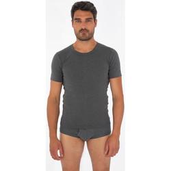 Vêtements Homme T-shirts manches courtes Armor Lux T-shirt - coton peigné Gris Chiné (Brown Coal)