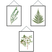 Maison & Déco Stickers Zen Et Ethnique Autocollant Mural cadres Herbiers Blanc