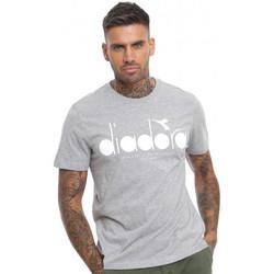 Vêtements Homme T-shirts manches courtes Diadora Tee-shirt homme  502.161161924 gris Gris