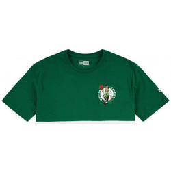 Vêtements Homme T-shirts manches courtes New-Era Tee shirt homme BOSTON CELTICS blanc et vert Vert