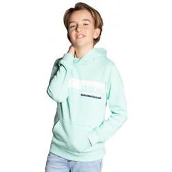 Vêtements Enfant Sweats Deeluxe Sweat  junior vert d'eau TEQUILA Vert