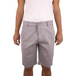 Vêtements Homme Shorts / Bermudas Torrente Giuliano Gris