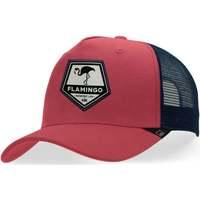 Accessoires textile Casquettes Hanukeii Flamingo Rouge