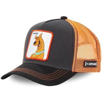 Accessoires textile Homme Casquettes Capslab Casquette trucker Scooby-Doo Marron