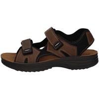 Chaussures Homme Sandales sport Inblu RY 25 BRUN