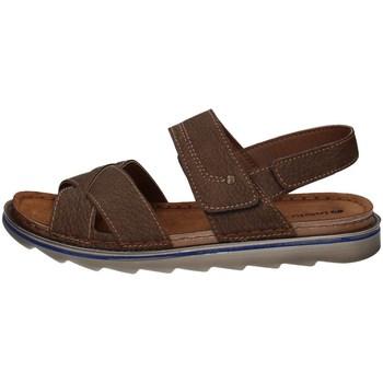 Chaussures Homme Sandales et Nu-pieds Inblu BU 6 BRUN