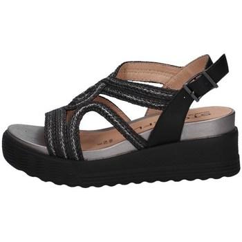 Chaussures Femme Marques à la une Stonefly 216177 Noir