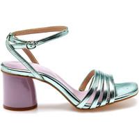 Chaussures Femme Sandales et Nu-pieds Apepazza S1WAVE04/MTL Vert