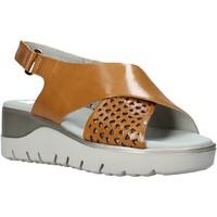 Chaussures Femme Sandales et Nu-pieds CallagHan 26508 Marron