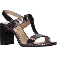 Chaussures Femme Sandales et Nu-pieds Apepazza S0MONDRIAN07/TEJ Marron
