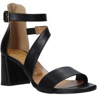 Chaussures Femme Sandales et Nu-pieds Grace Shoes 380034 Noir