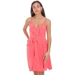 Vêtements Femme Robes courtes Fracomina FS21SD1008W42201 Rose