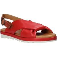 Chaussures Femme Sandales et Nu-pieds Sshady L1403 Rouge