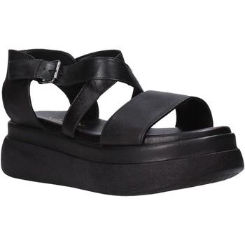 Chaussures Femme Sandales et Nu-pieds Sshady L2204 Noir