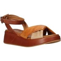 Chaussures Femme Sandales et Nu-pieds Sshady L2401 Marron