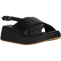 Chaussures Femme Sandales et Nu-pieds Sshady L2410 Noir