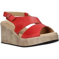 Chaussures Femme Sandales et Nu-pieds Sshady L2502 Rouge