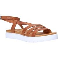 Chaussures Femme Sandales et Nu-pieds Sshady MRT339 Marron