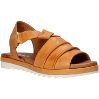 Chaussures Femme Sandales et Nu-pieds Sshady L1401 Marron
