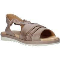 Chaussures Femme Sandales et Nu-pieds Sshady L1401 Gris