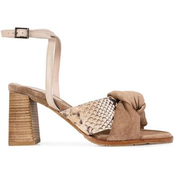 Chaussures Femme Sandales et Nu-pieds Paco Gil MARIANA Marron