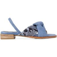 Chaussures Femme Sandales et Nu-pieds Paco Gil JULIA Bleu