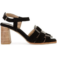 Chaussures Femme Sandales et Nu-pieds Paco Gil AMELIA Noir