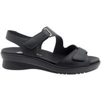 Chaussures Femme Sandales et Nu-pieds Piesanto 200891 Negro