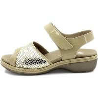Chaussures Femme Sandales et Nu-pieds Piesanto 180816 Beig