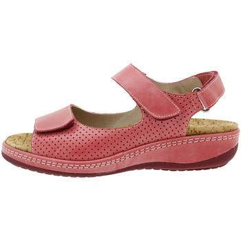 Chaussures Femme Sandales et Nu-pieds Piesanto 180911 Rojo