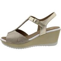 Chaussures Femme Sandales et Nu-pieds Piesanto 190350 Beig