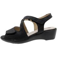 Chaussures Femme Sandales et Nu-pieds Piesanto 190381 Negro