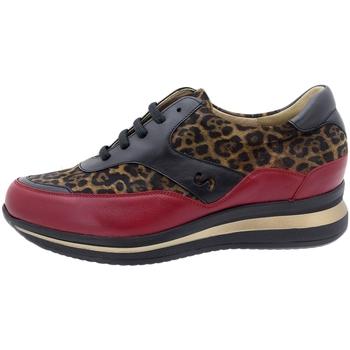Chaussures Femme Baskets basses Piesanto 195769 Burdeo